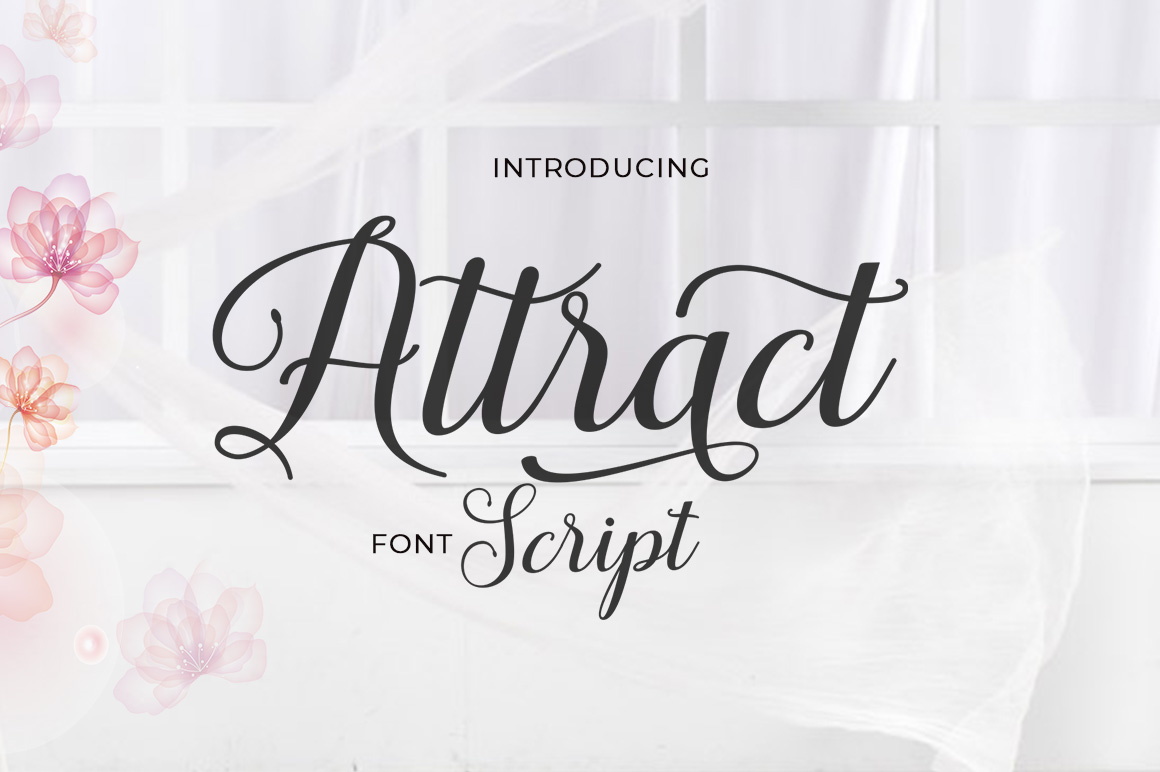 Attract Script example image 1
