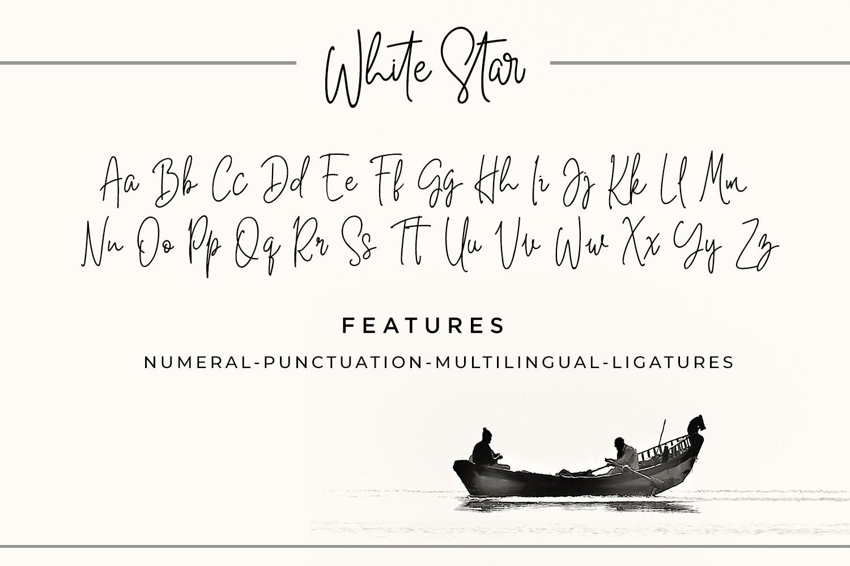 White Star- Chic Handwritten font example image 2