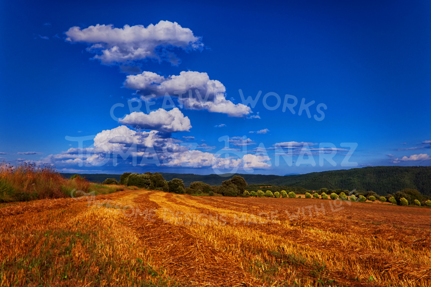Harvest Field With Cloudy Sky example image 1