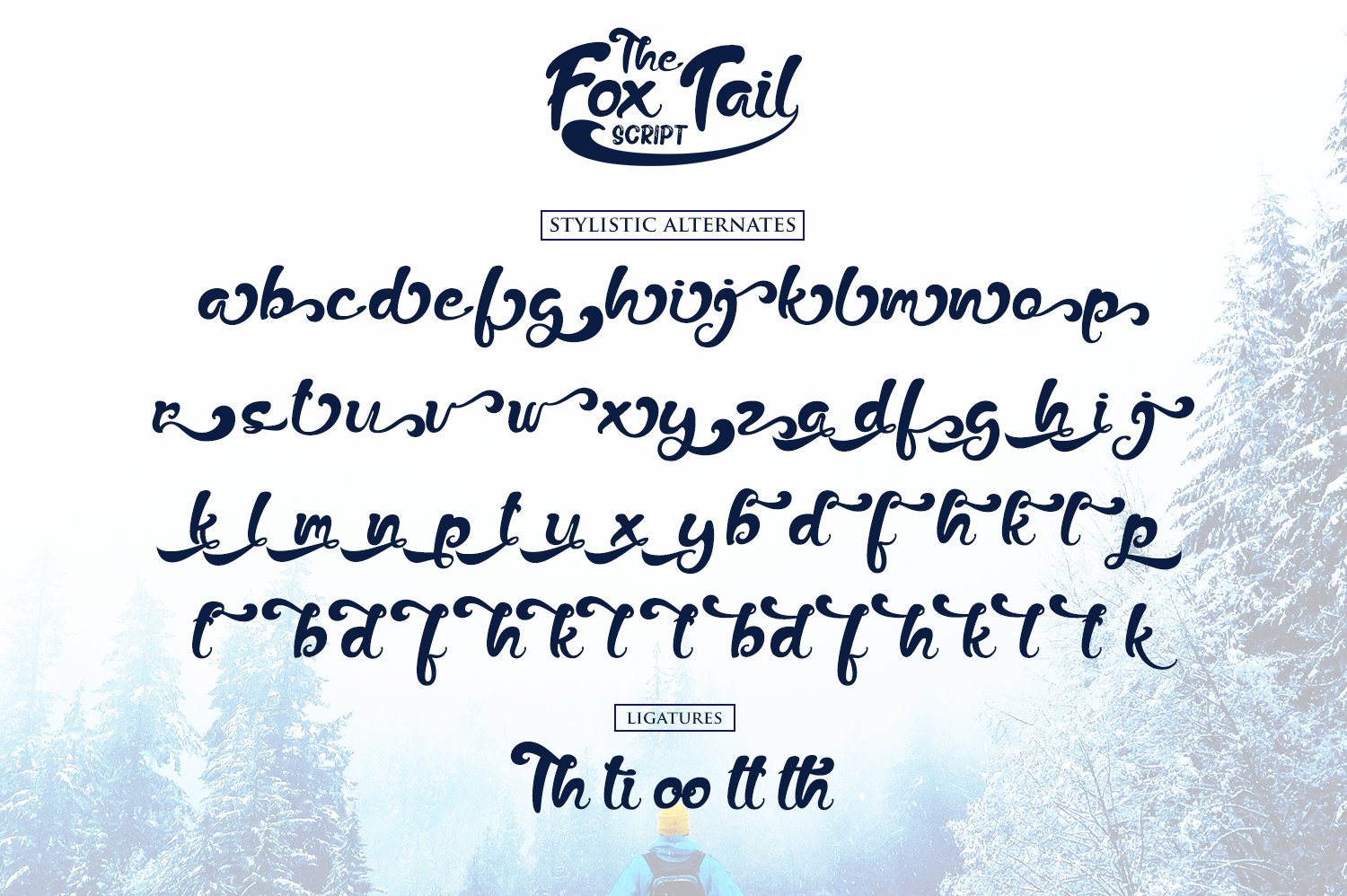 The Fox Tail - Font Duo&Extras example image 7