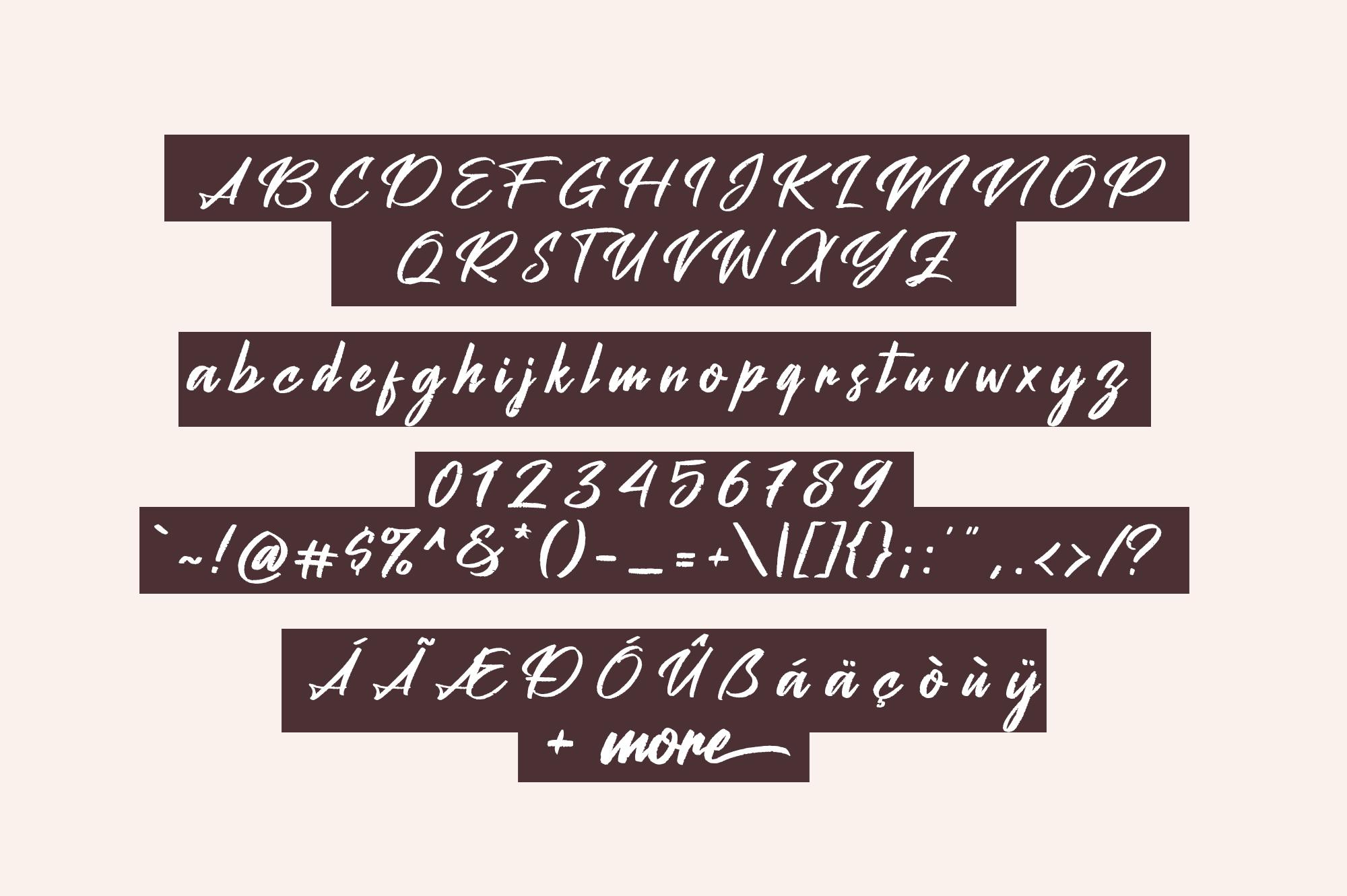 Peach Pen Script example image 6