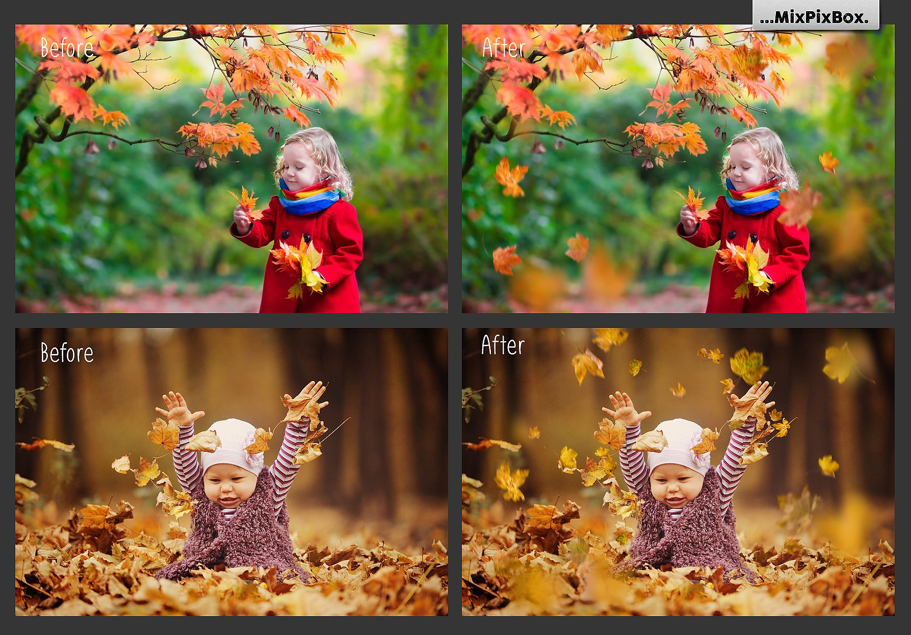 50 Autumn Leaves Overlays example image 3