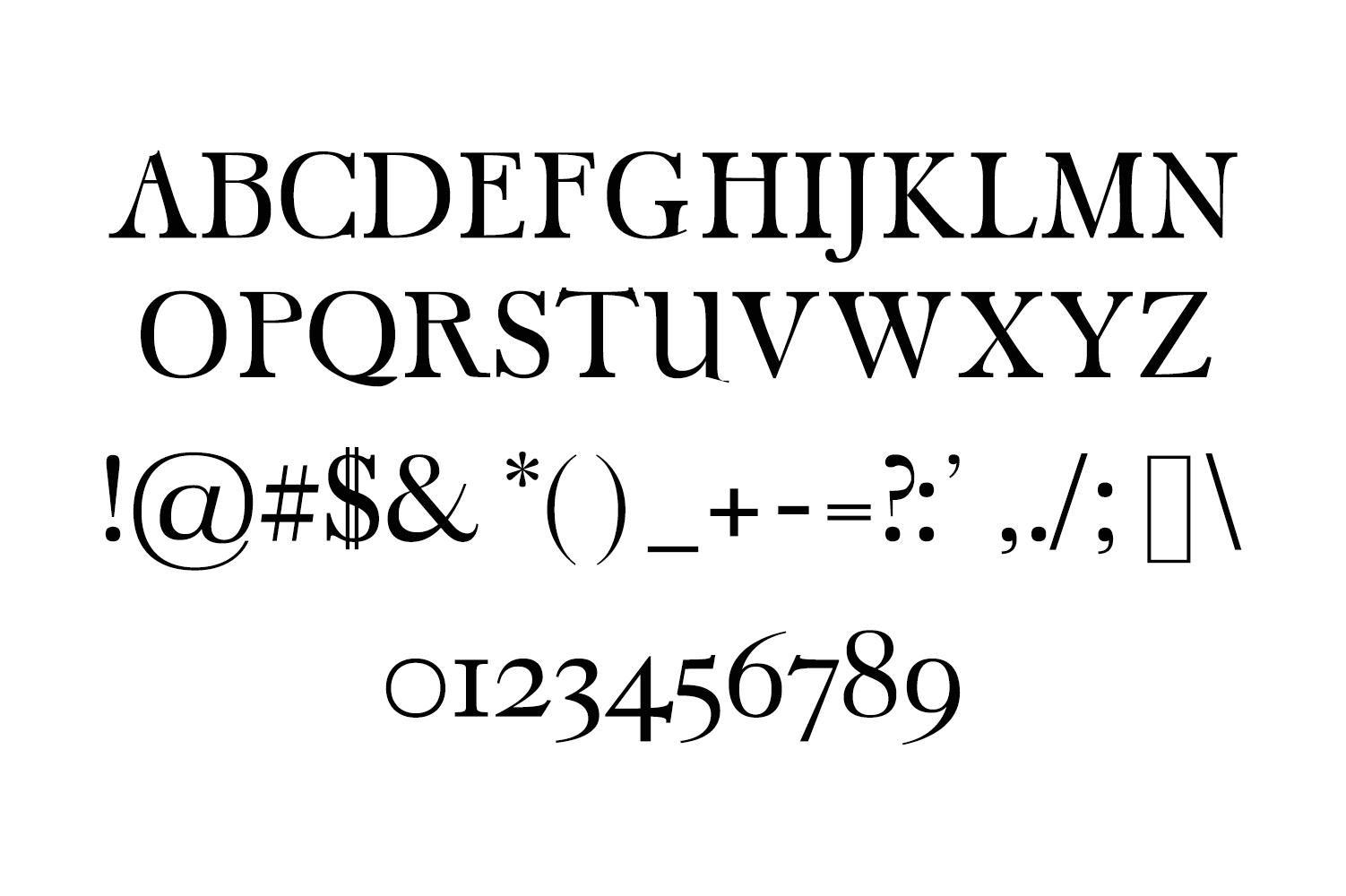 Carita Clean Serif 3 Font Family example image 2