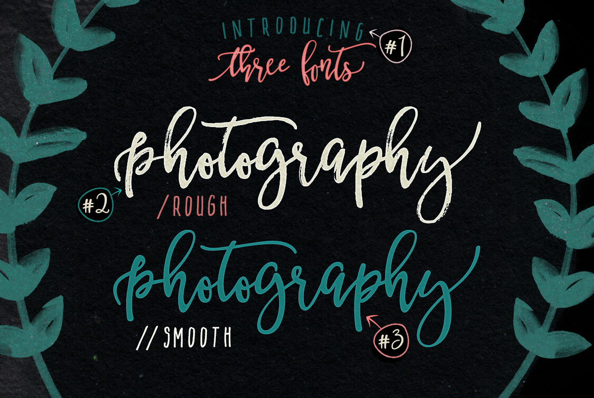 BetterFly - 3 modern fonts & swashes example image 3
