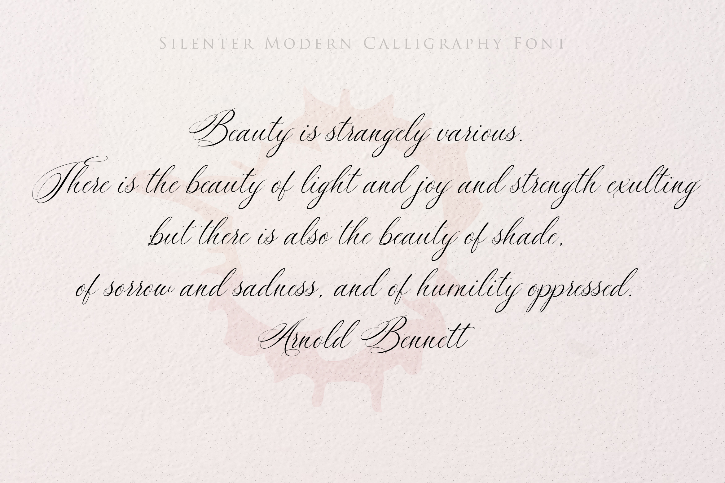 Silenter / Modern Calligraphy Font example image 4