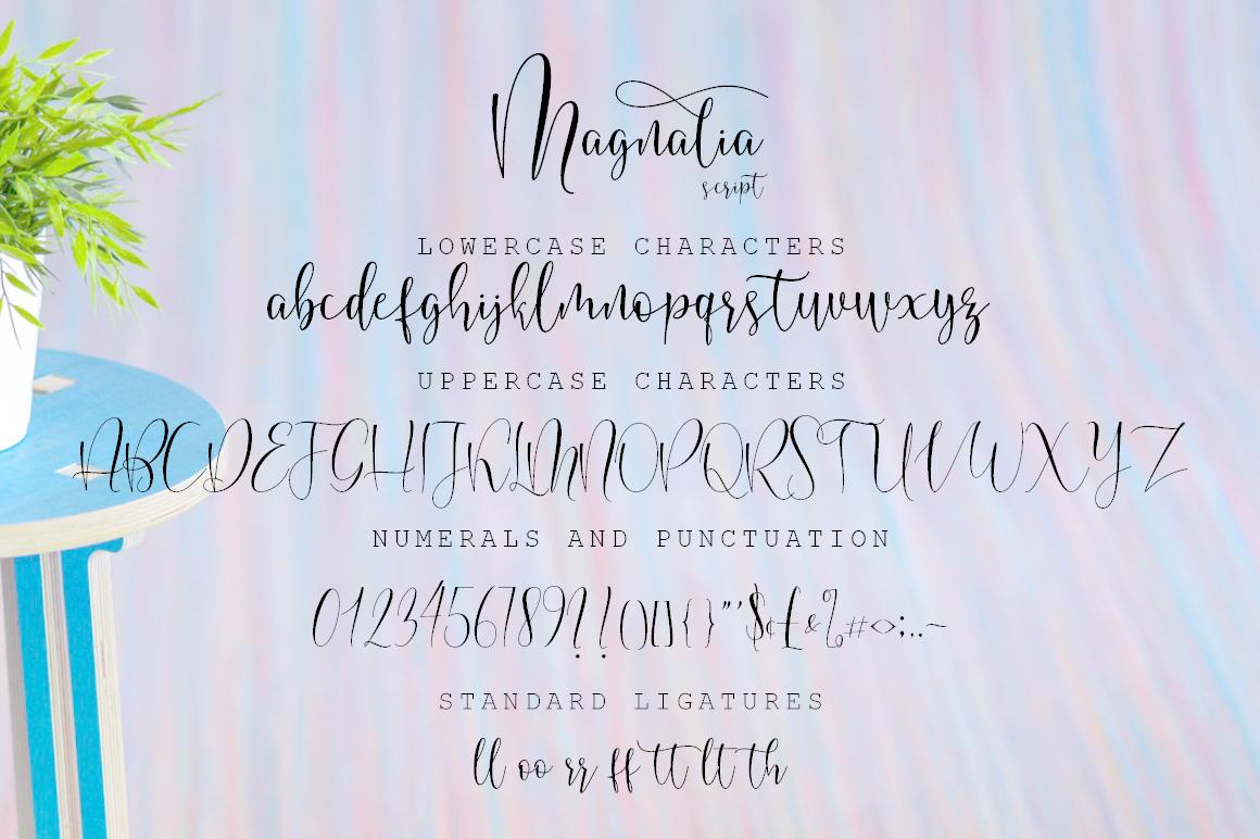 Magnalia Font Script example image 7