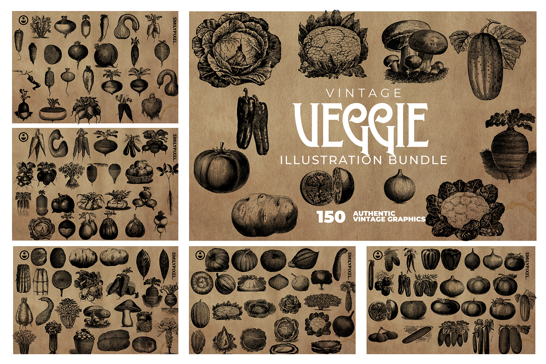 2200 Vintage Graphics Bundle example image 23