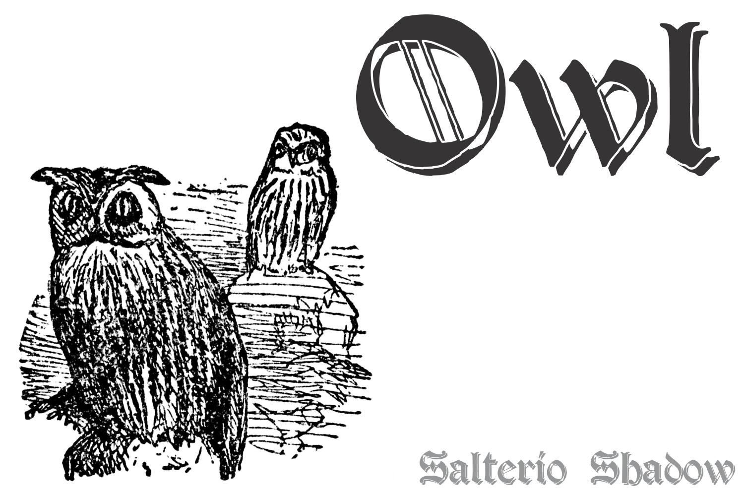 Salterio (six pack fonts) example image 3