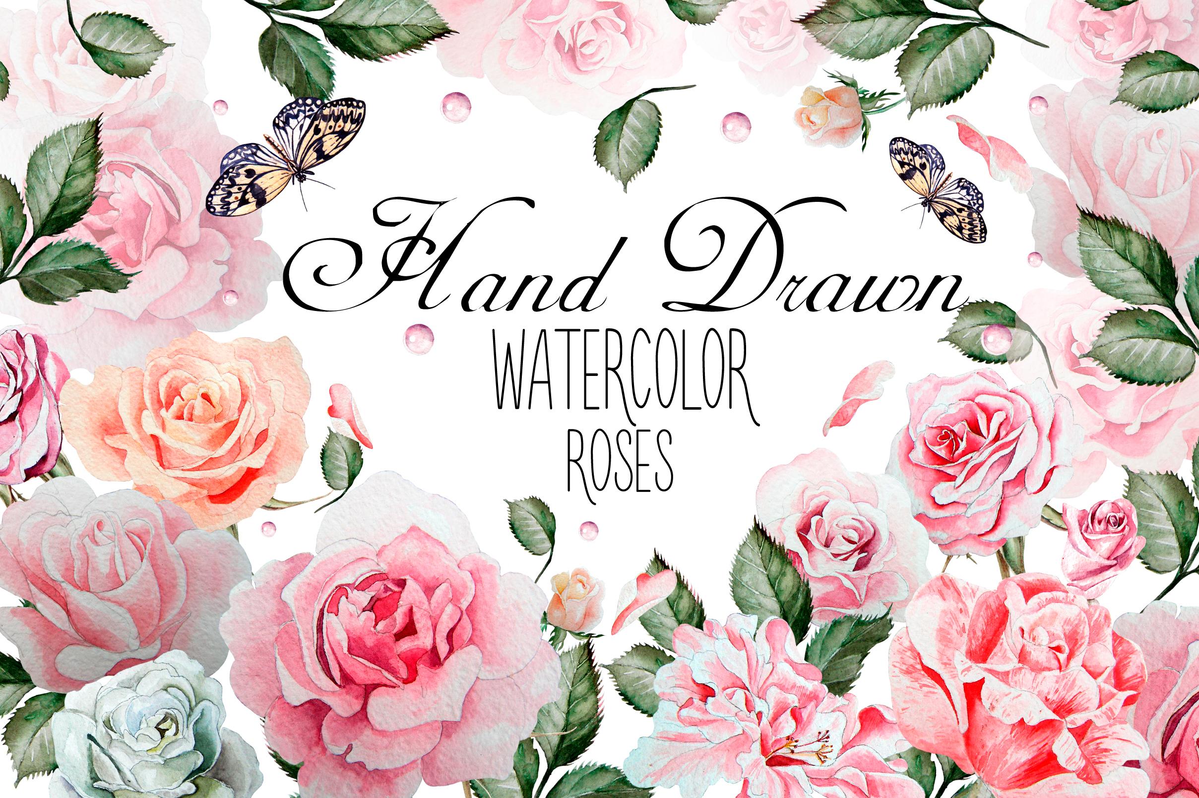 hand drawn watercolor roses 2 by knopaz design bundles