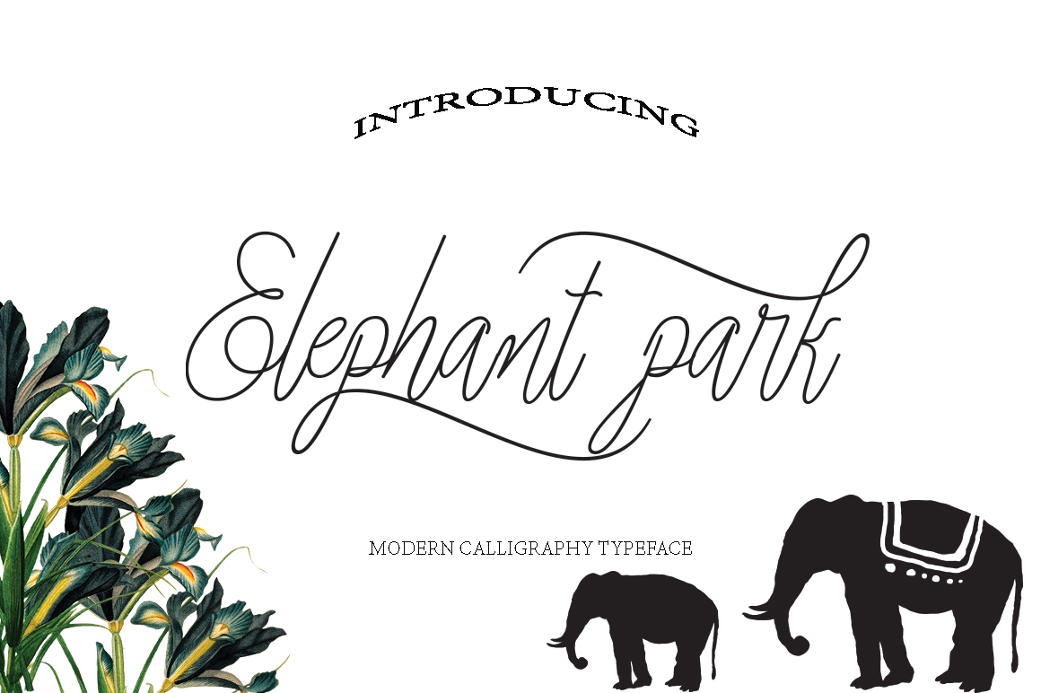 Elephant Park Font Duo example image 1