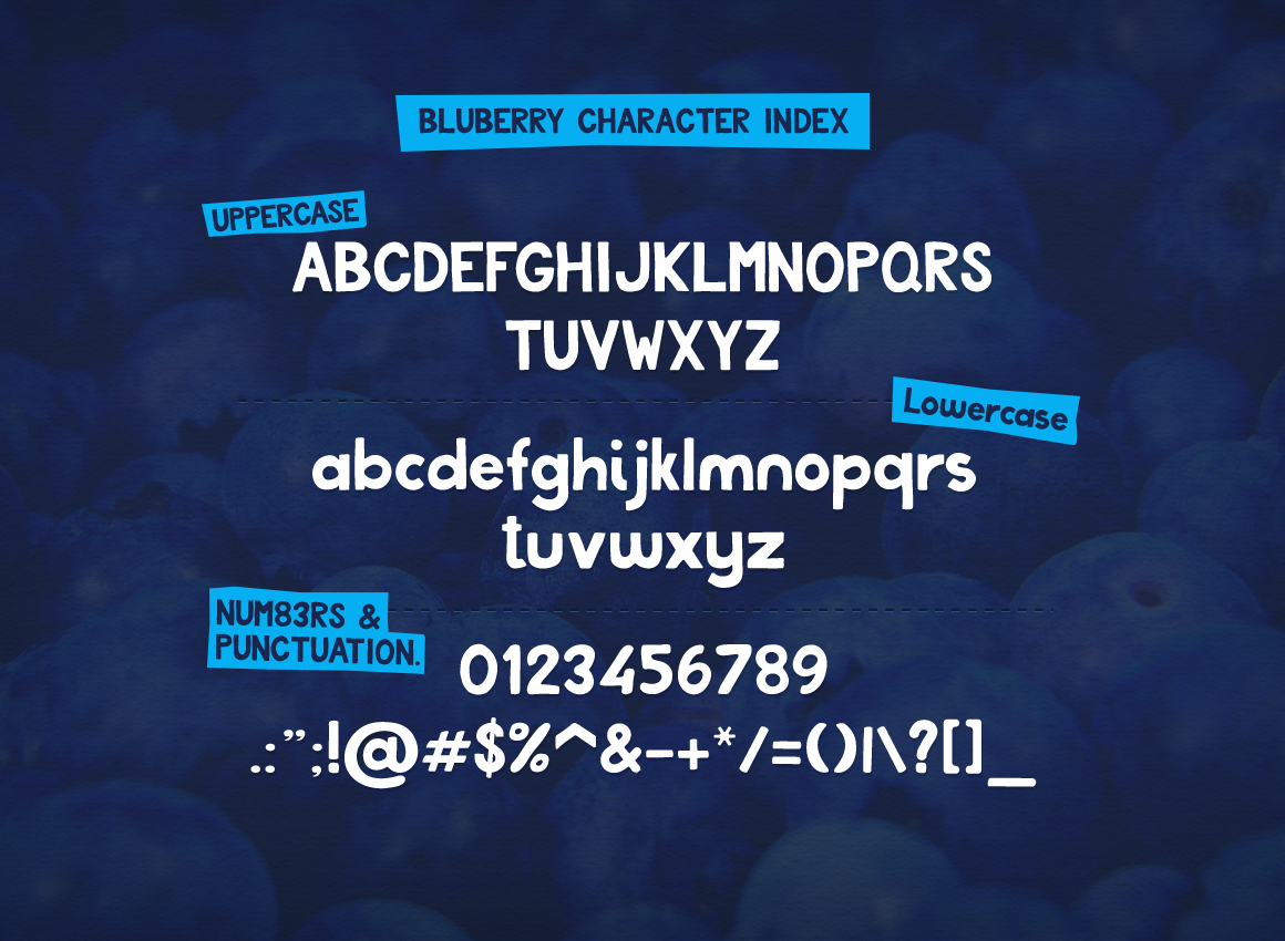 Bluberry Typeface example image 2
