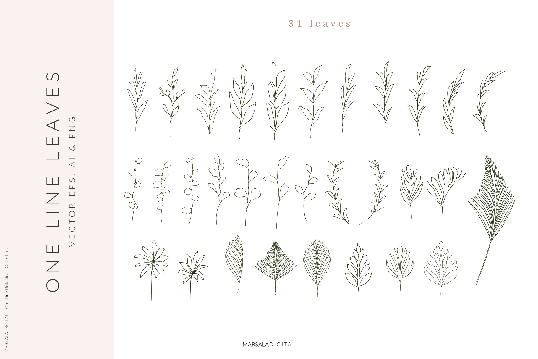 One Line Botanical Drawings Line Art Graphics example image 4
