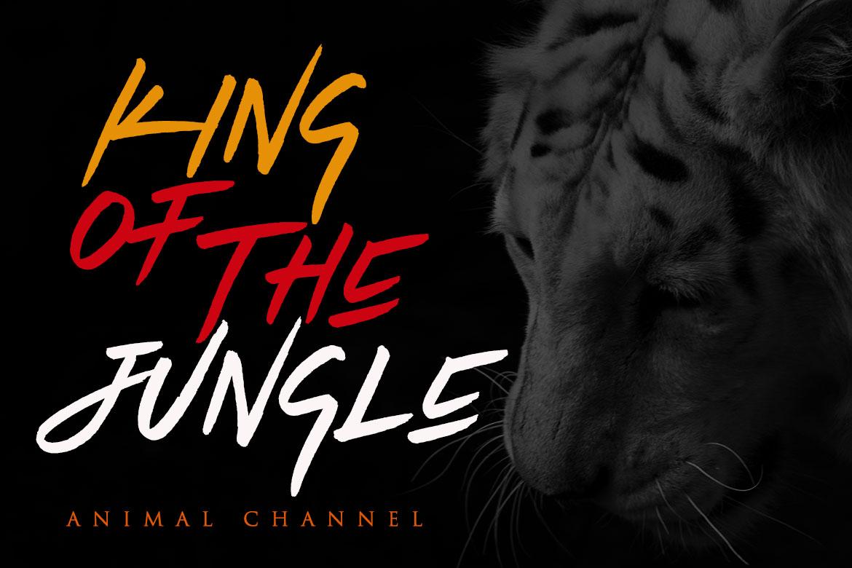 Tiger Walk example image 4