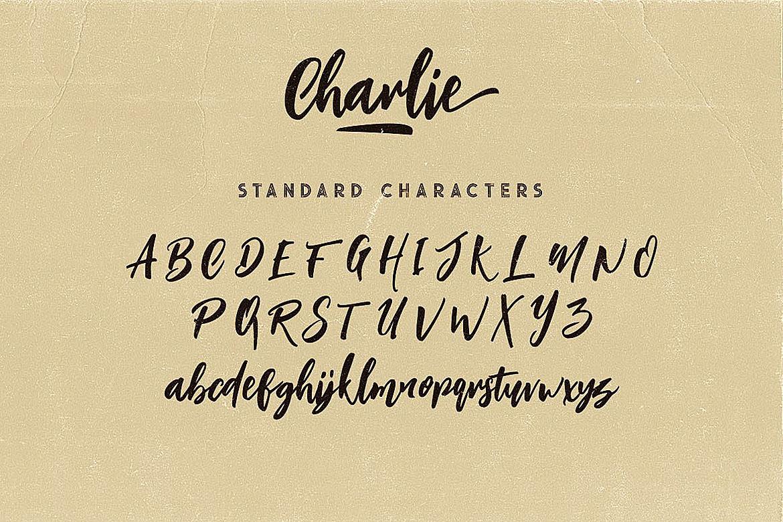 Charlie Script Font example image 6