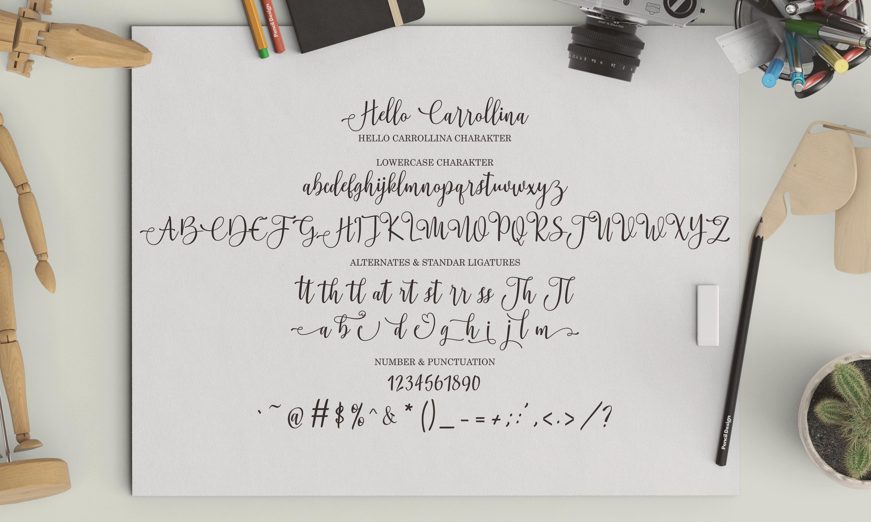 Hello Carrollina Script example image 7
