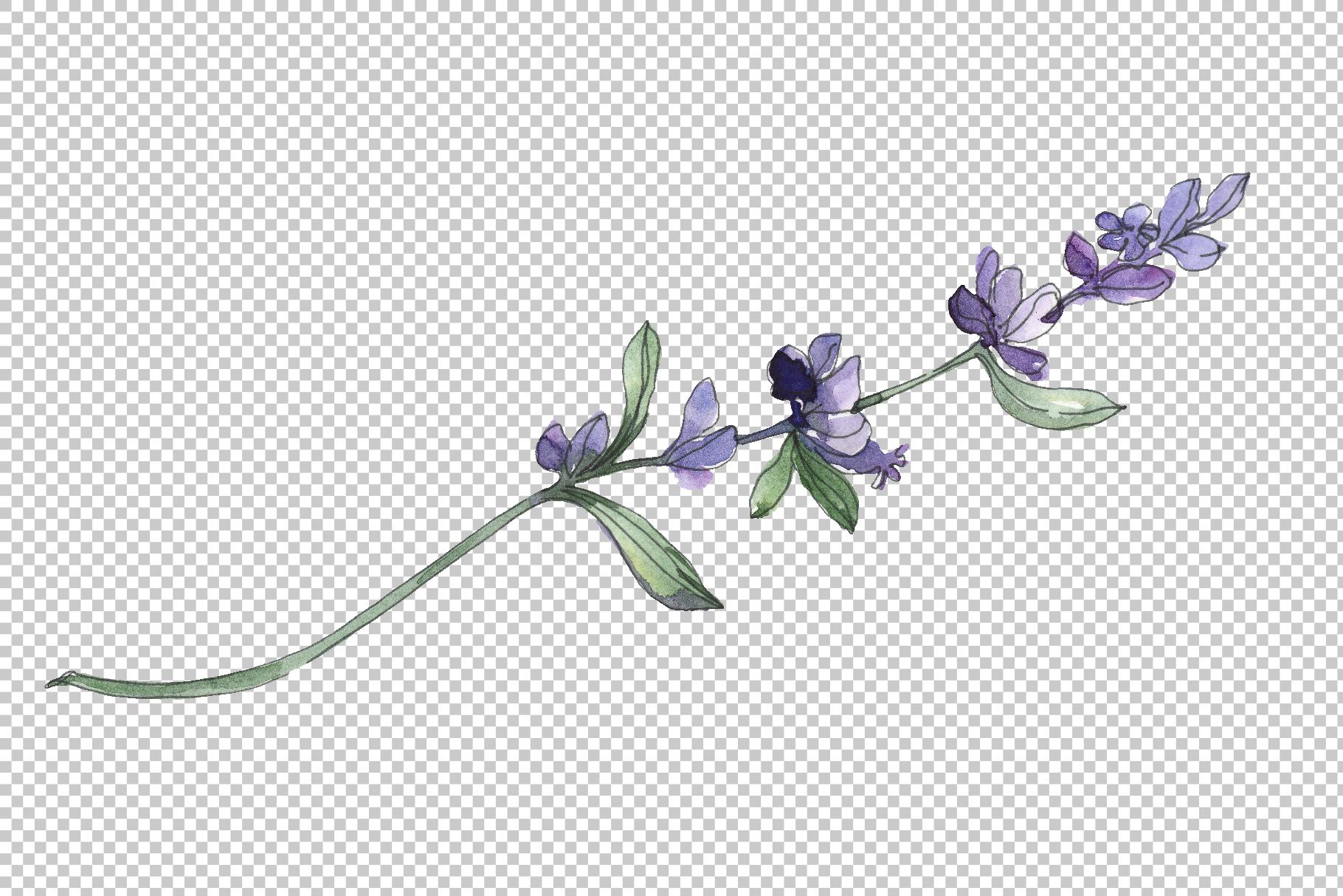 Bouquet summer breeze lavender watercolor png example image 5