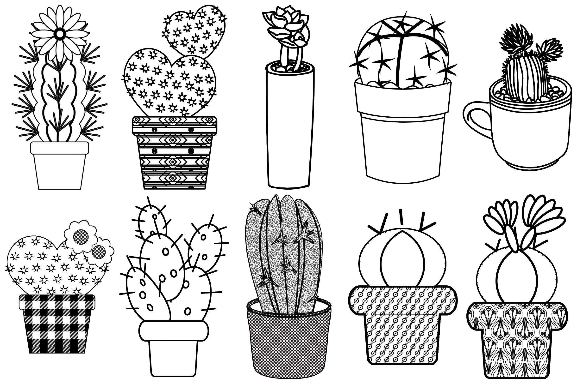 Cactus and Succulents AI EPS PNG, Vector Clip Art example image 2