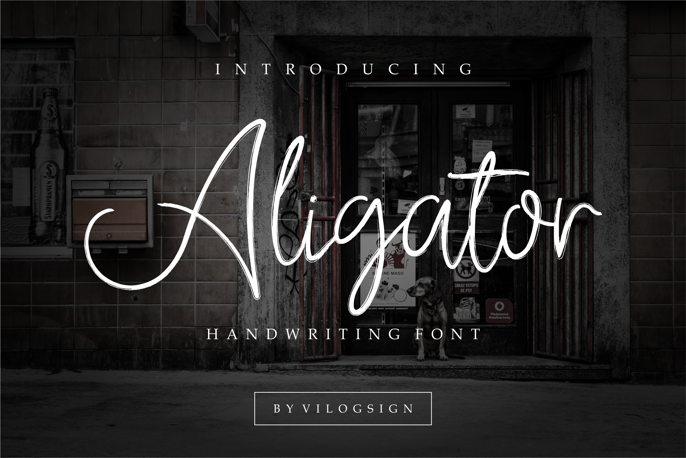 Aligator Signature Font example image 1
