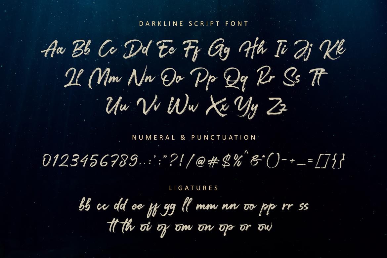 Darkline Brush Script Font example image 11