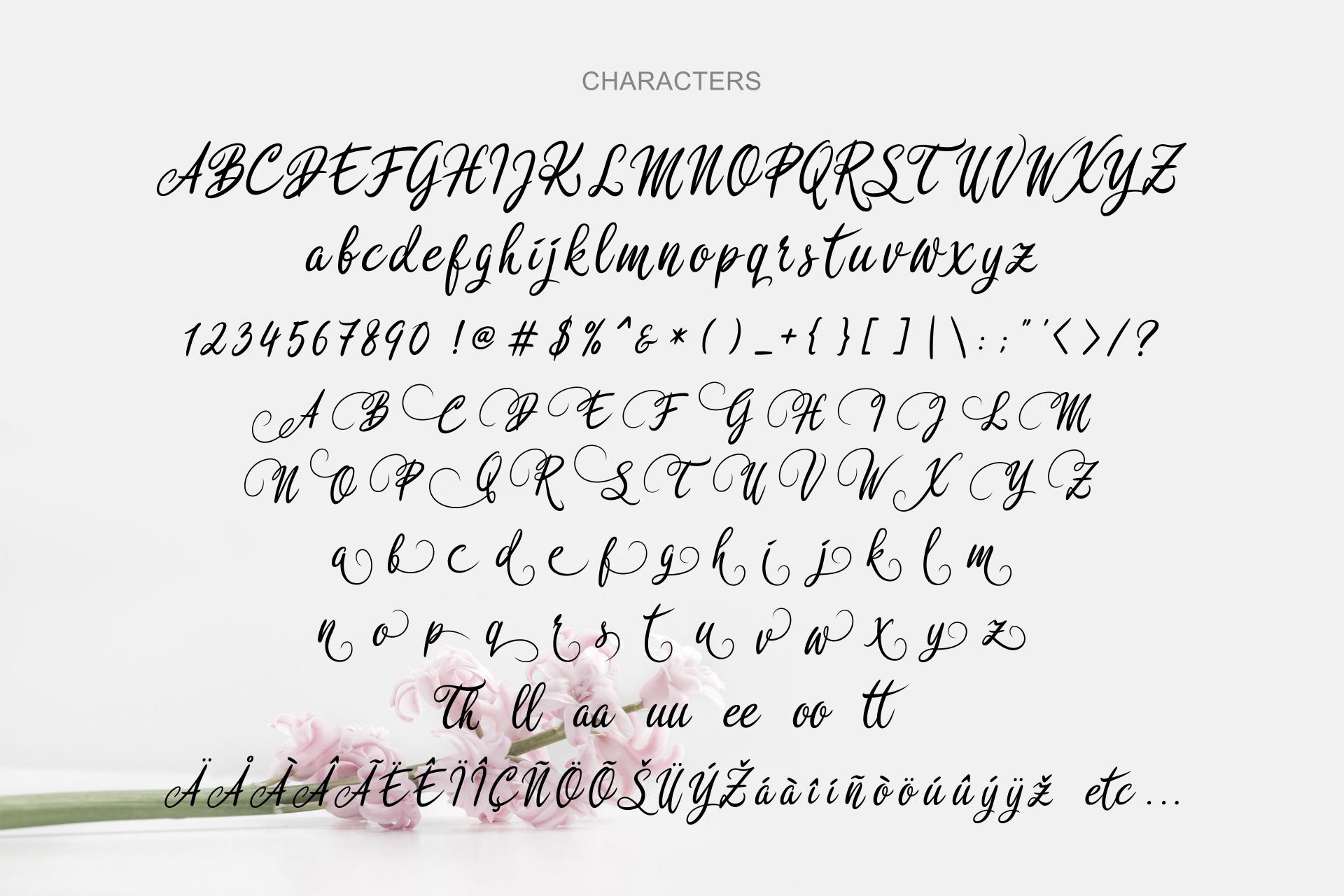 Rosedita Script example image 11