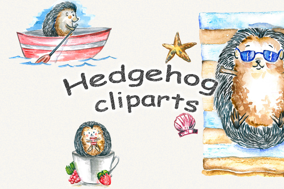Hedgehog clipart, watercolor clipart example image 2
