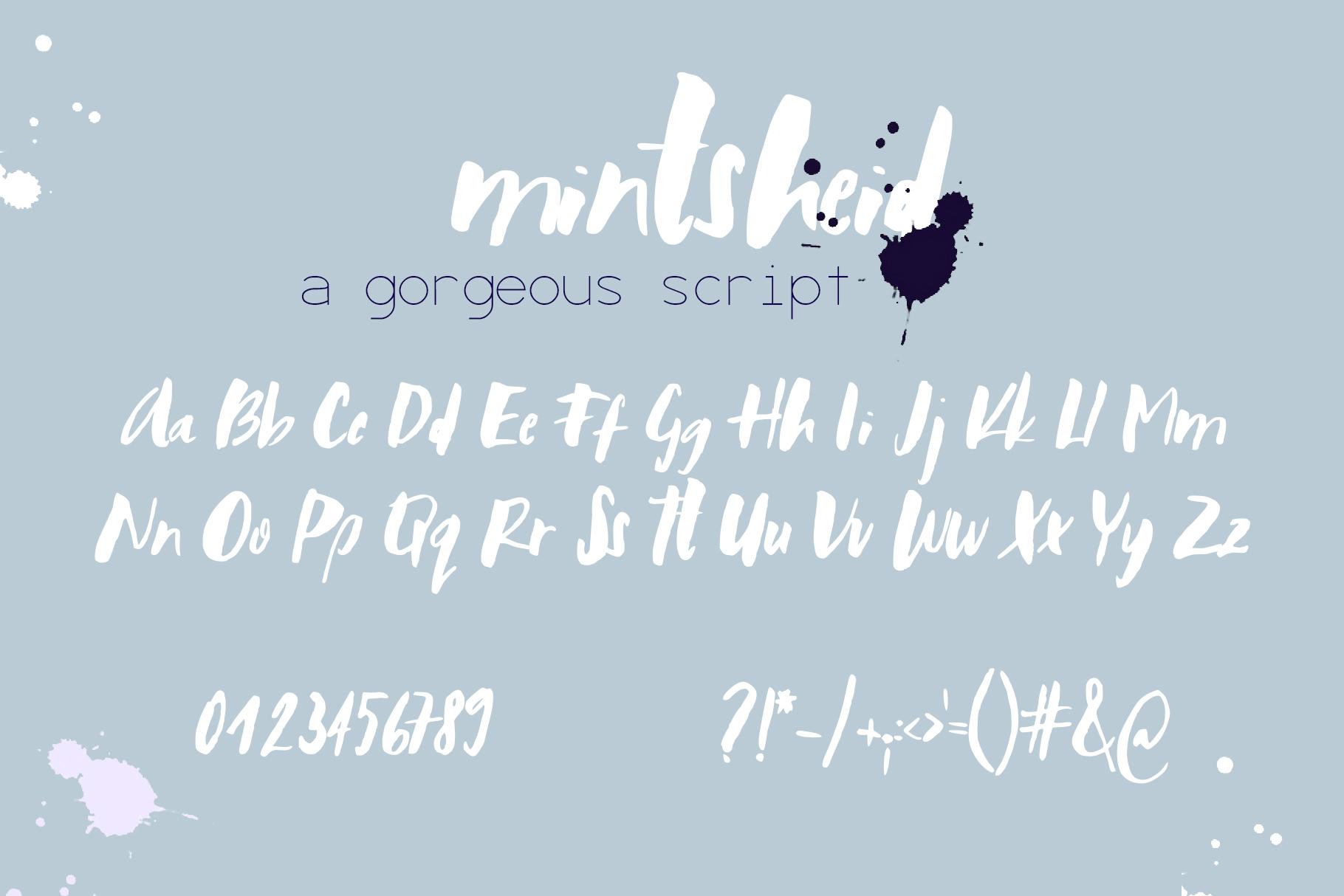 Mintsheid Font example image 8