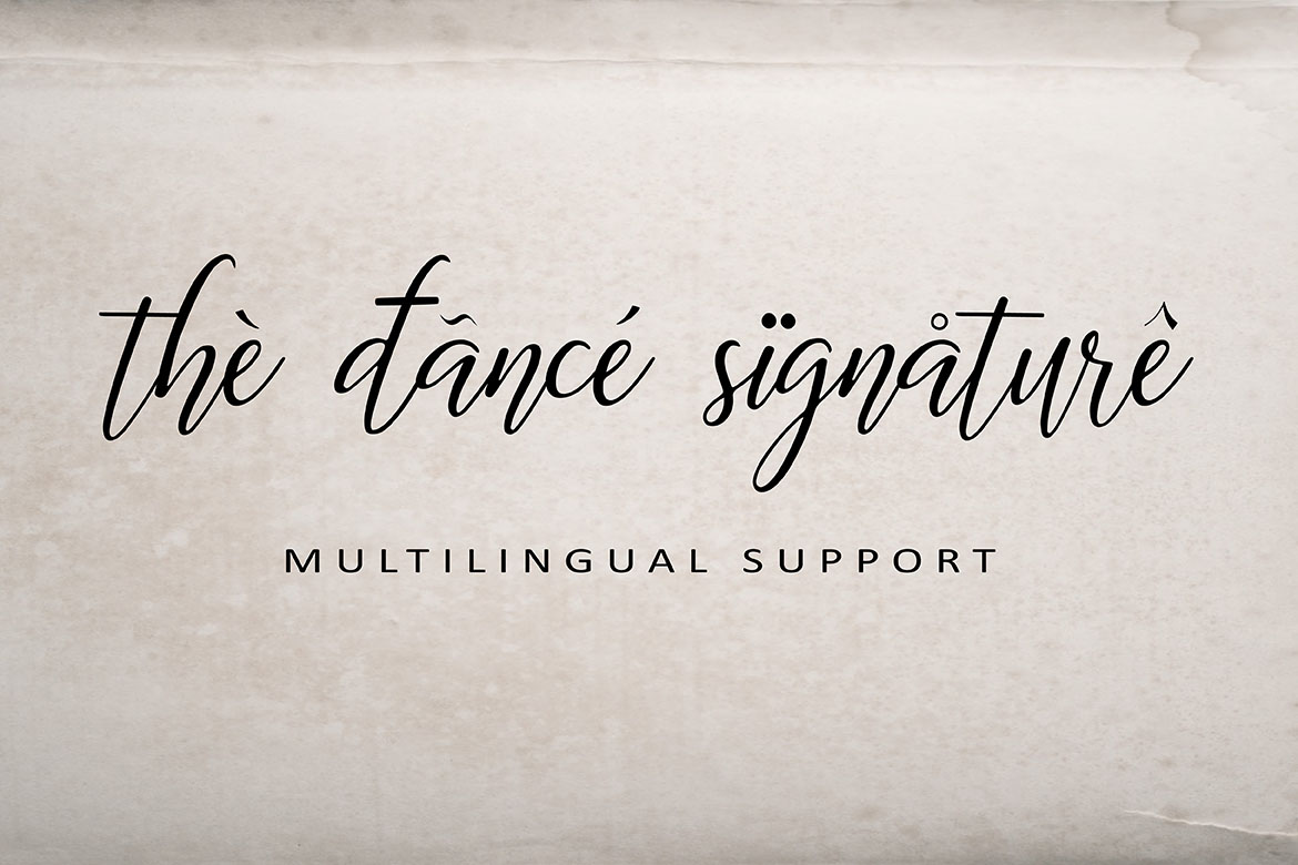 The Dance Signature   A BOUNCY FONT example image 9
