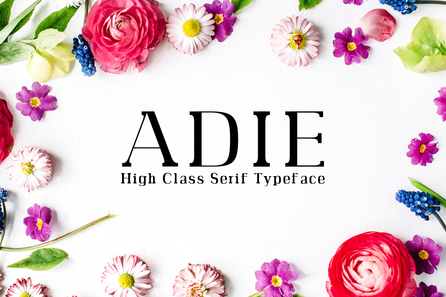 Adie High Class Serif Typeface example image 1