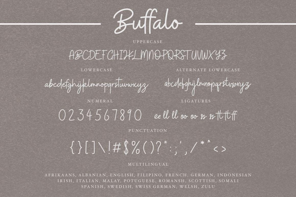 Buffalo Font example image 8