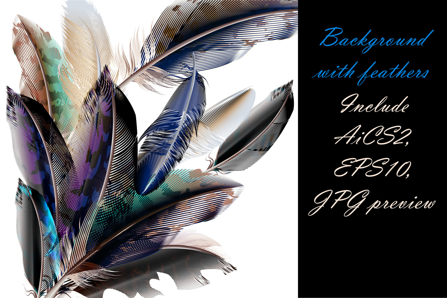 Colorful feather bundle. Vector illustrations and elements example image 6