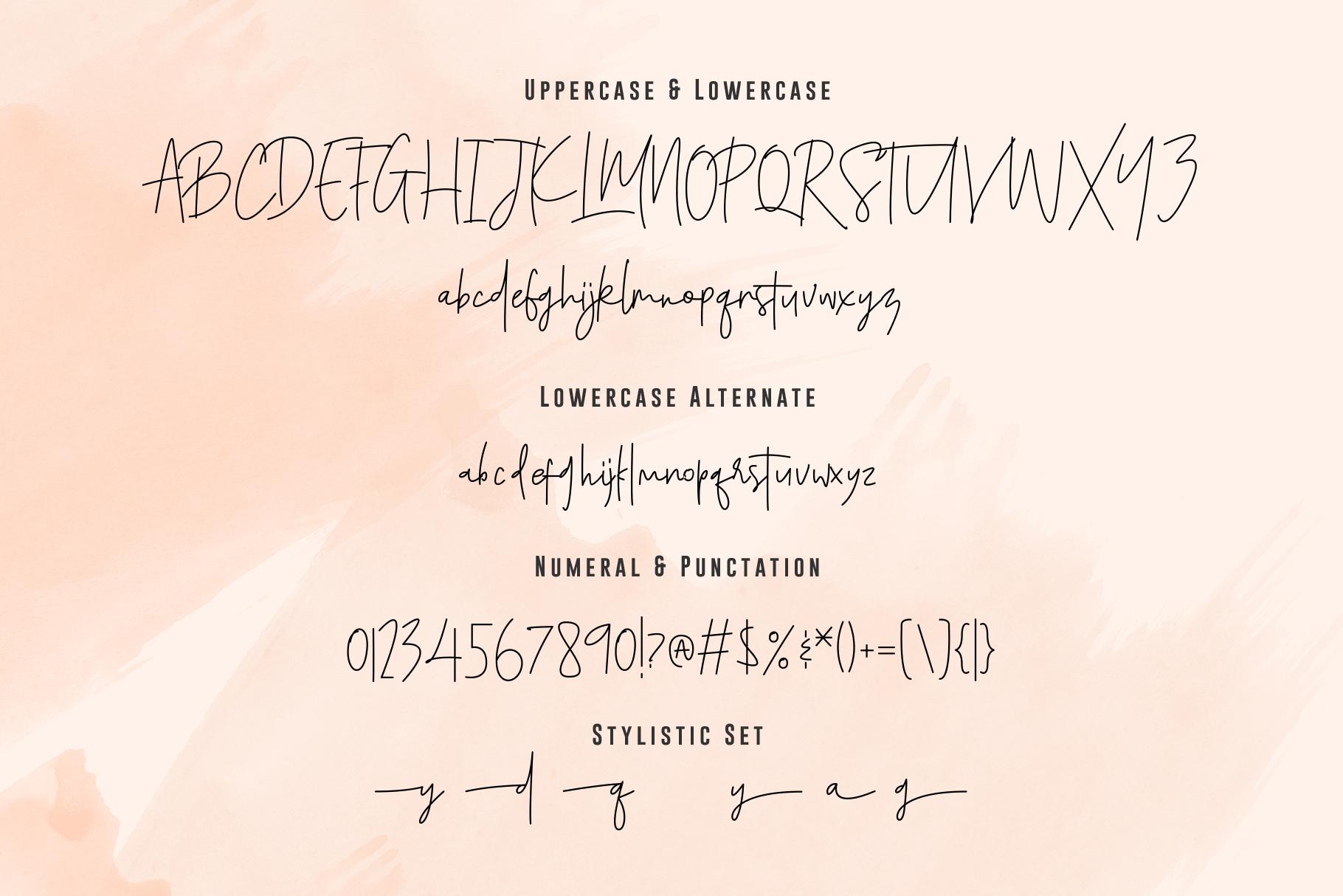 Santiago Pro - Signature Monoline / FREE 10 LOGO example image 18