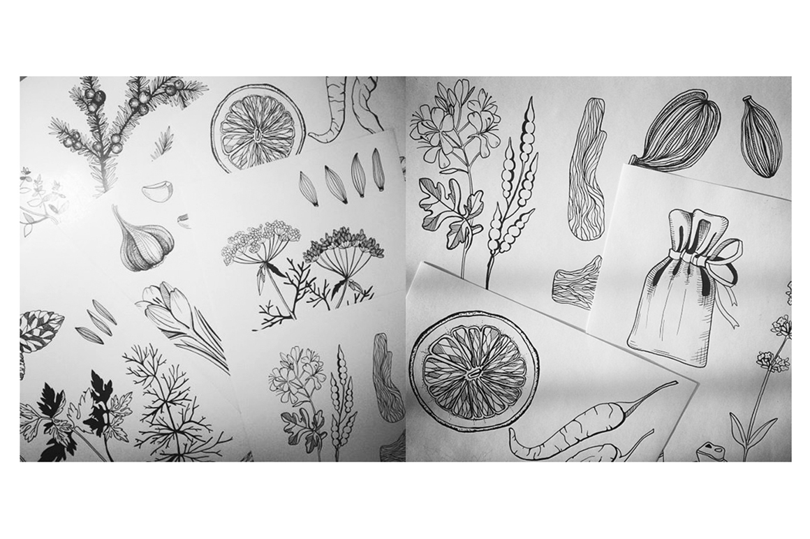 Ink Hand Drawn Spice Collection example image 12