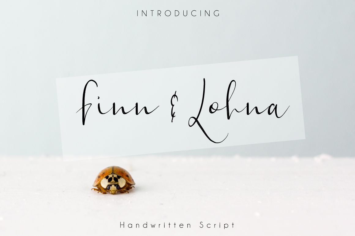 Finn & Lohna example image 1