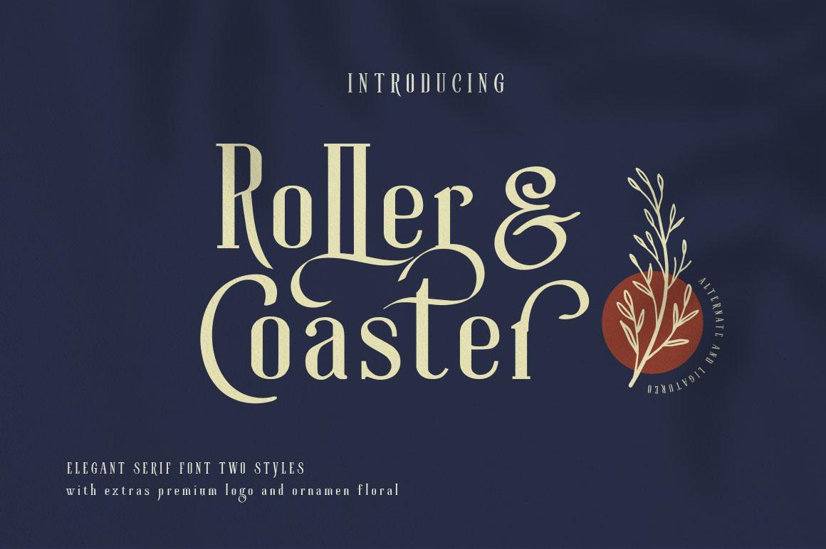 Roller Coaster Elegant Serif Extra example image 3
