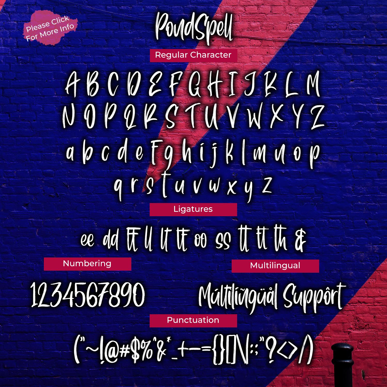 Pondspell Brush Font example image 5