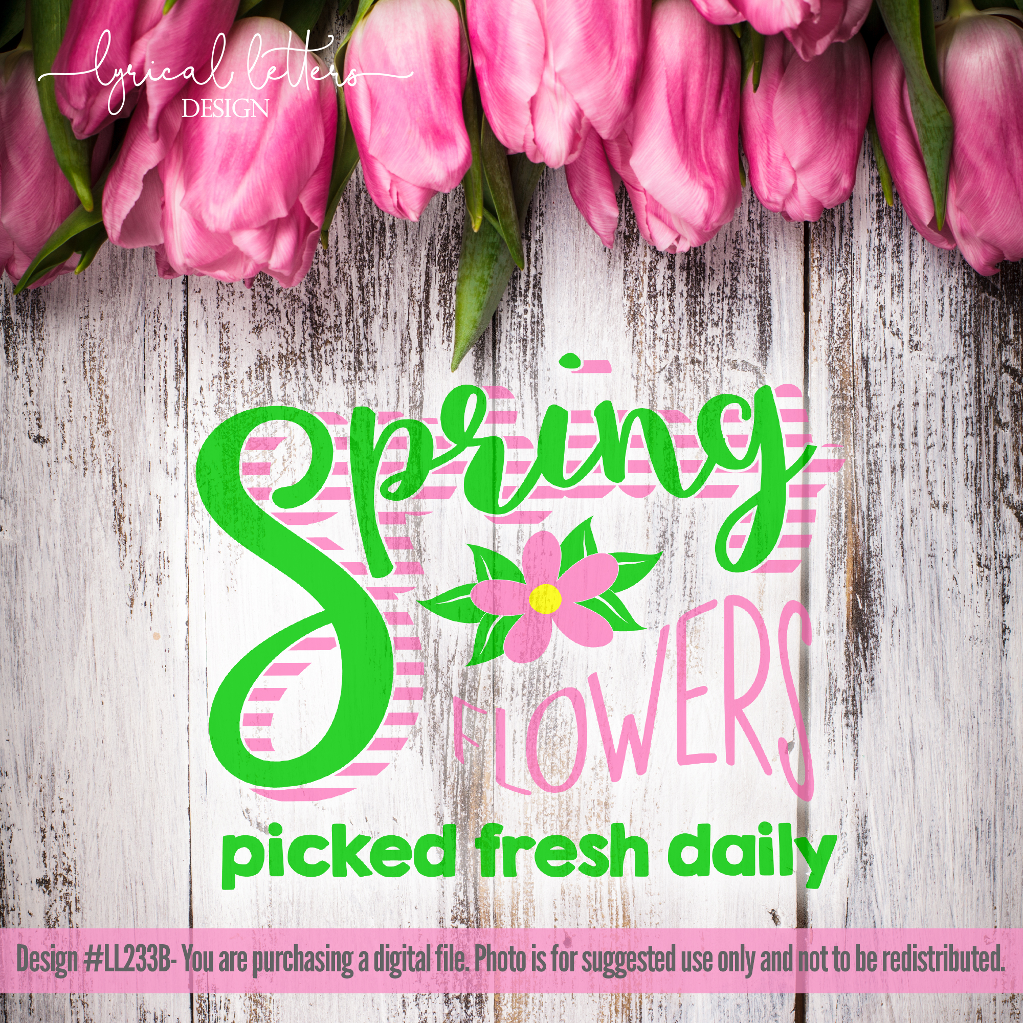 Spring Flowers Picked Fresh Daily SVG DXF LL233B example image 2