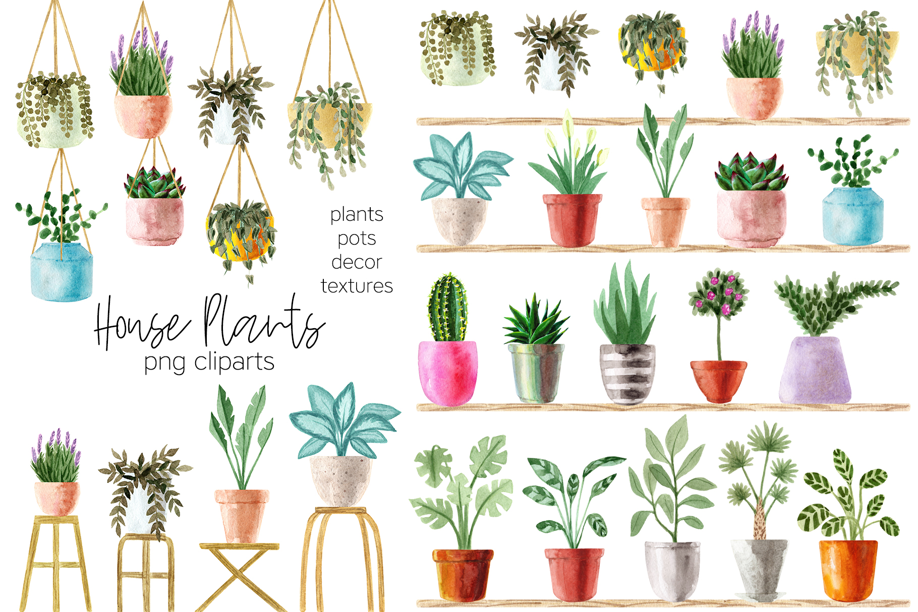 Watercolor House Plants Patterns example image 2