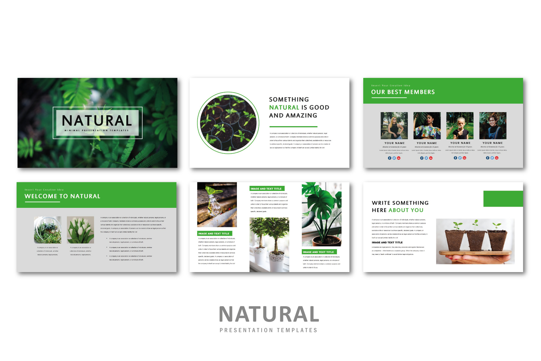 Natural PowerPoint Templates example image 2