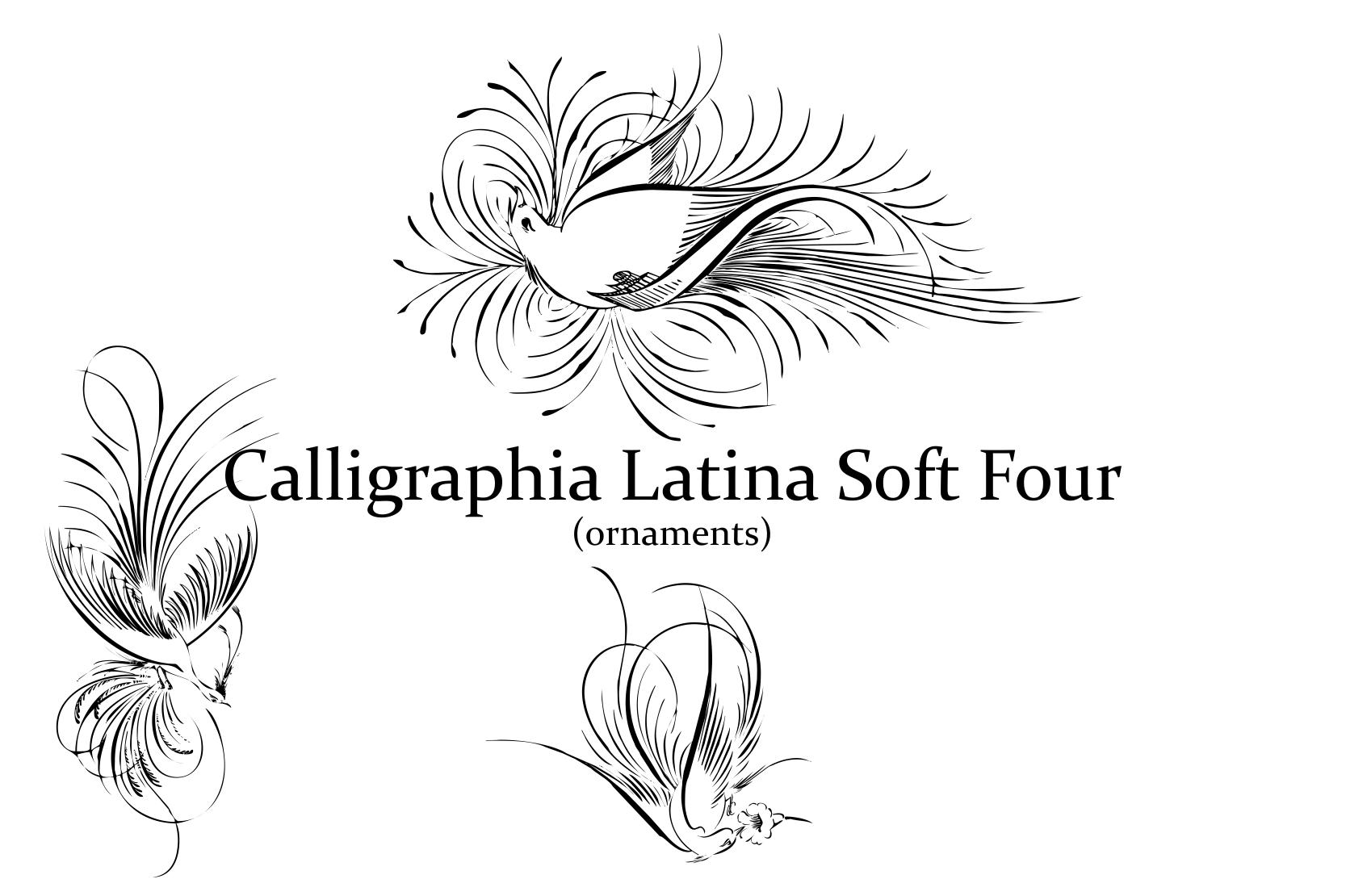Calligraphia Latina Soft 4 example image 4