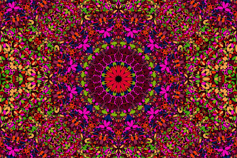 48 Seamless Floral Mandala Patterns example image 21