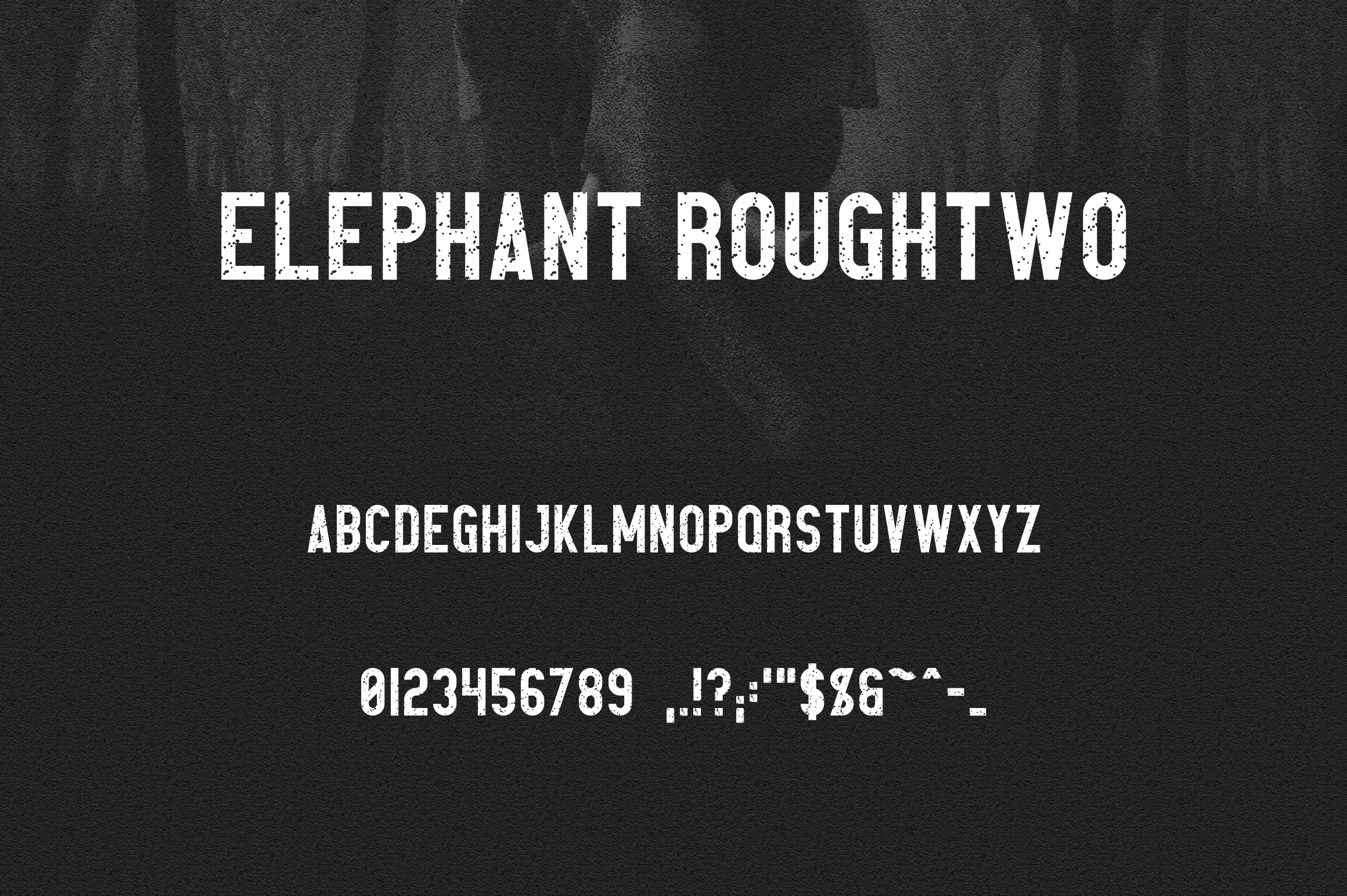 Elephant Font Family example image 10