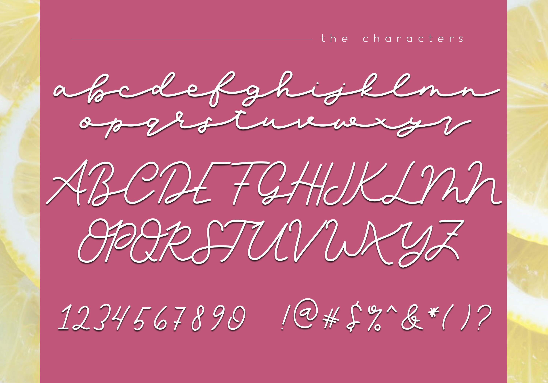 Lemonade - Handwritten Script Font example image 6