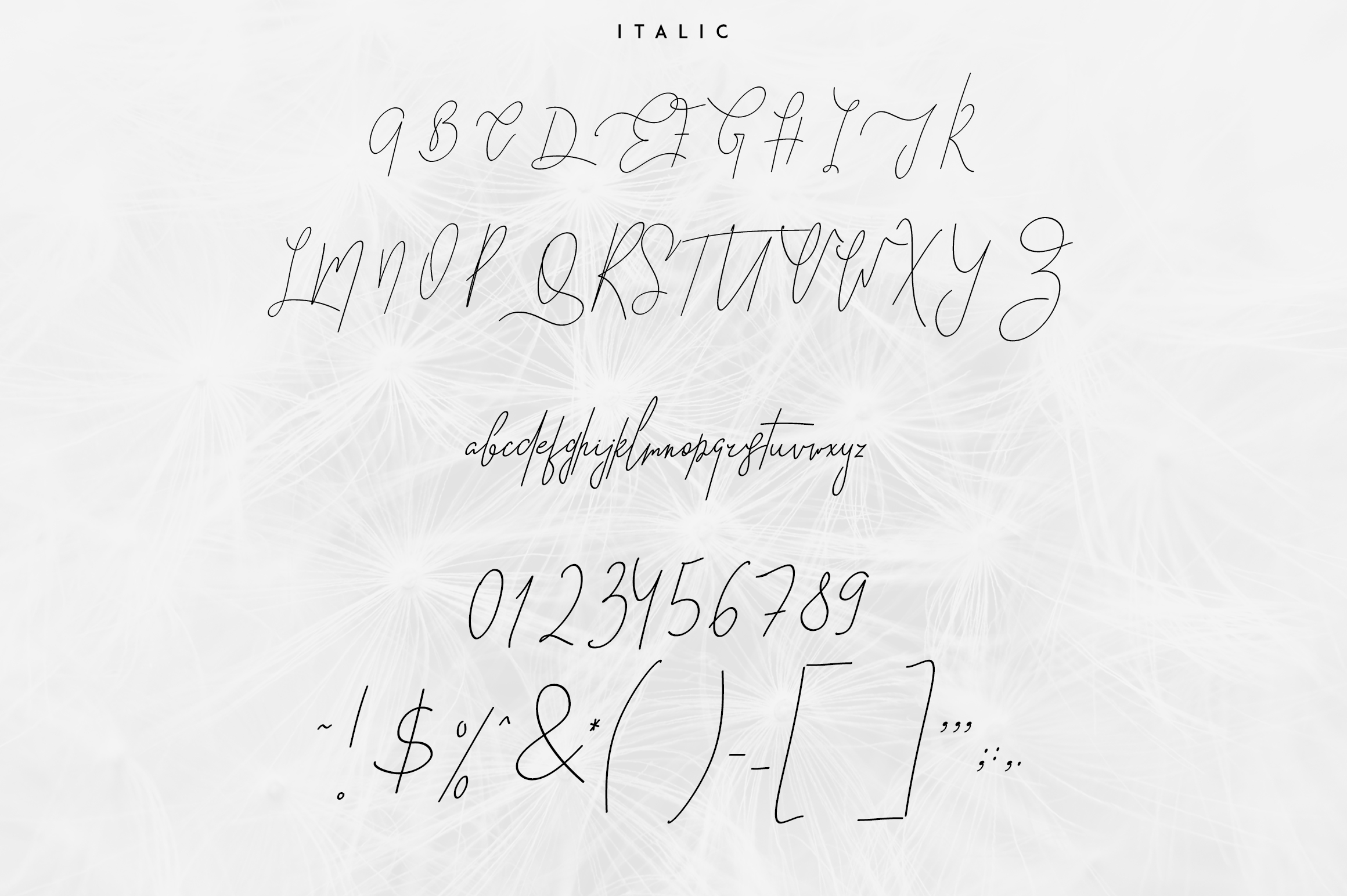 Good Wish Signature font example image 6