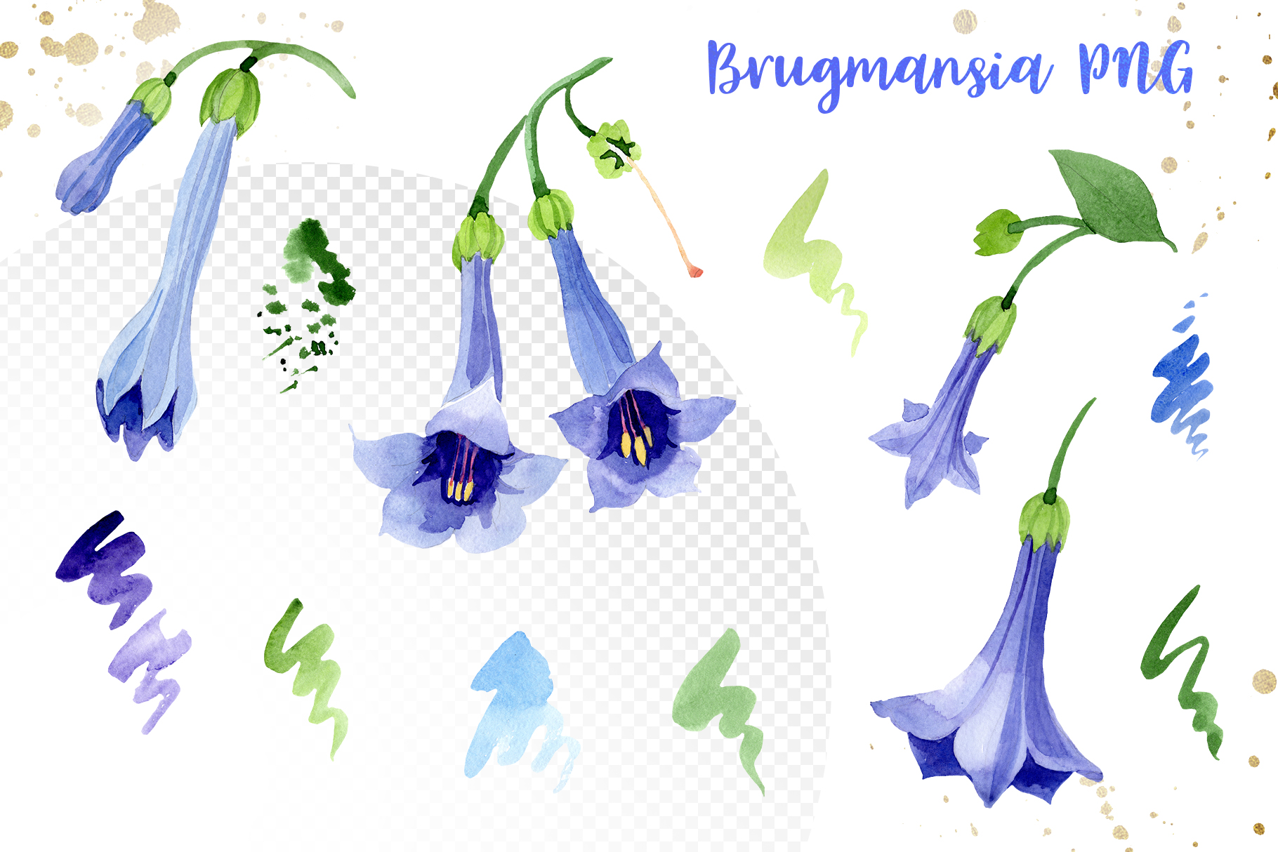 Blue brugmansia flower watercolor png example image 2