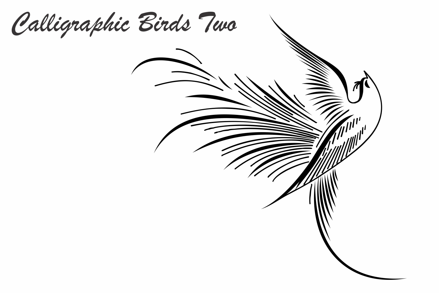 Calligraphic Birds Two example image 2