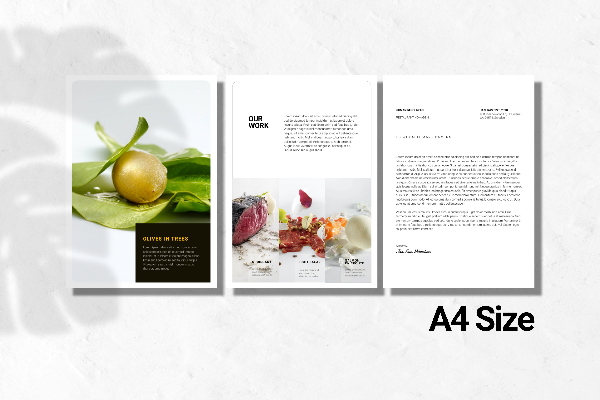 Clean Chef Resume Google Slides example image 4