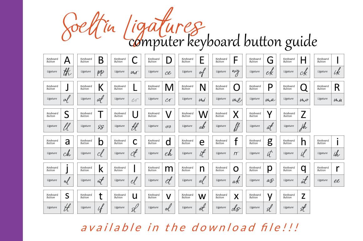 Soeltin Typeface example image 3