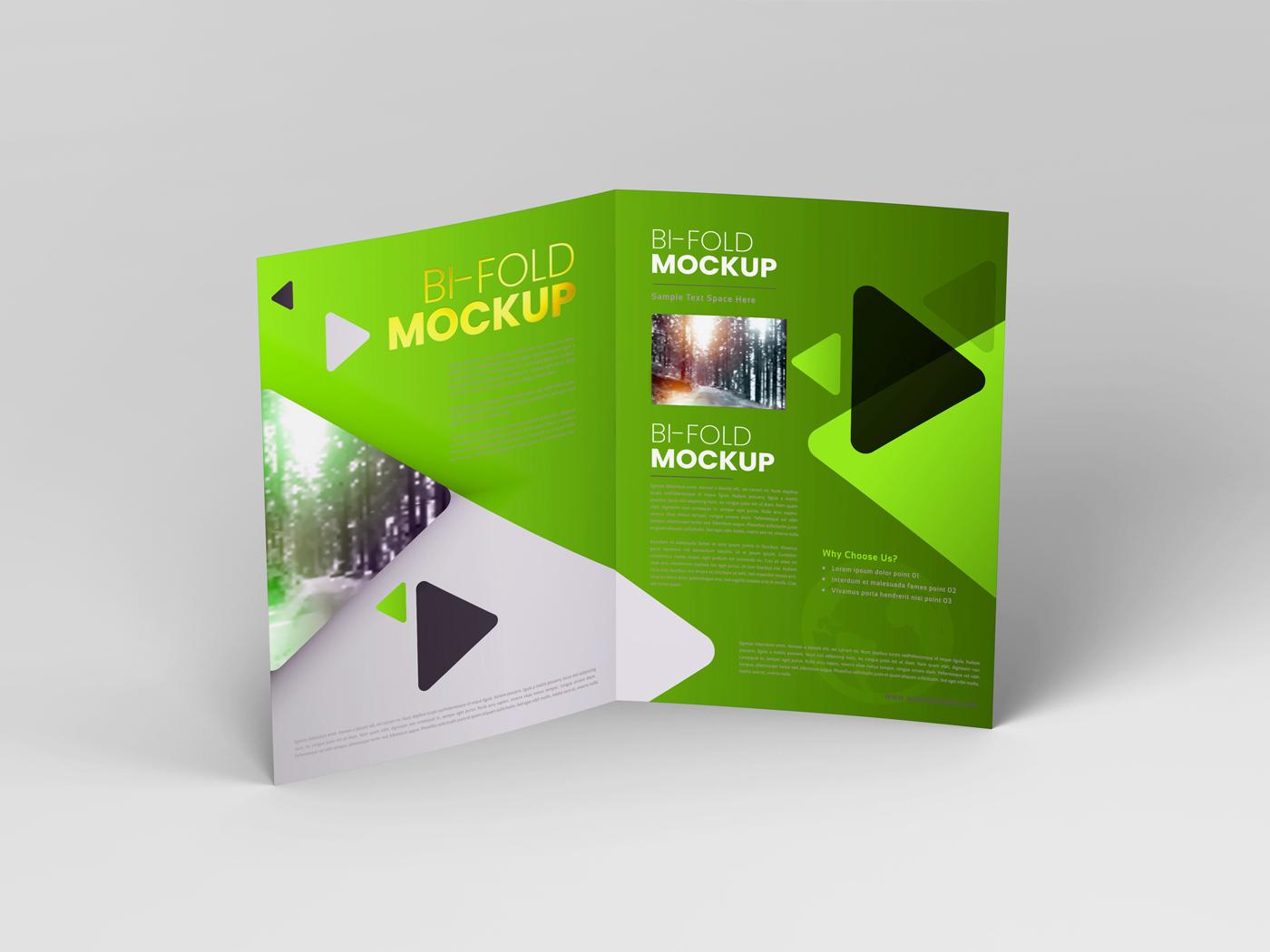 A4 Bifold Mockups V3 example image 10