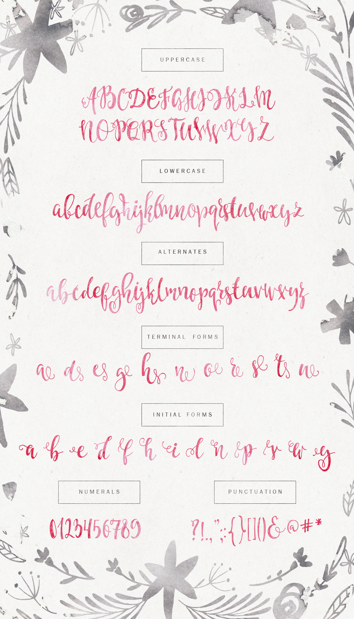 Caricia - handdrawn font example image 5