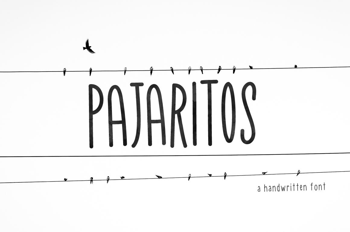 Pajaritos Skinny Font example image 1